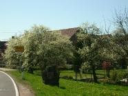 Bilder aus Bärweiler 09