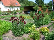 Bilder aus Bärweiler
