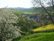 Bilder aus Bärweiler 15